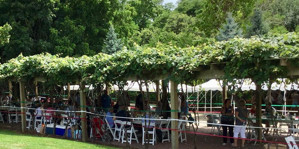 Picnic at Pugliese Winery