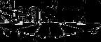 seashell-logo.png