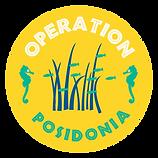 OperationPos.png