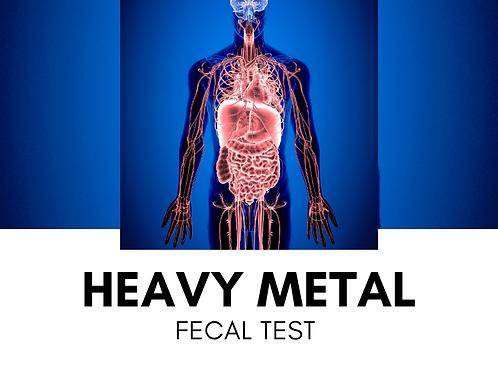 Metals Fecal Test