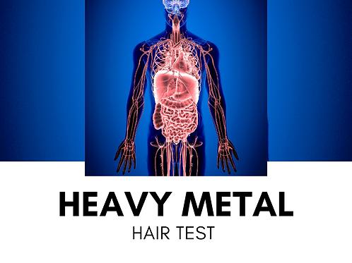 Metals Hair Test