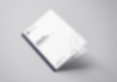 BankLoan_Brochure_MockUp-min.png
