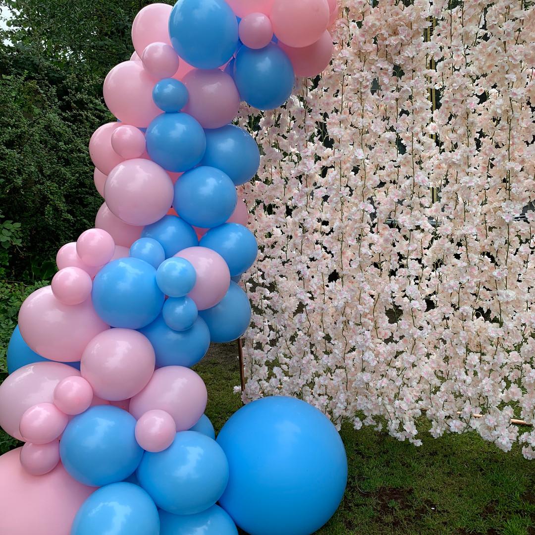 Baby Boy or Baby Girl? Balloon Garland