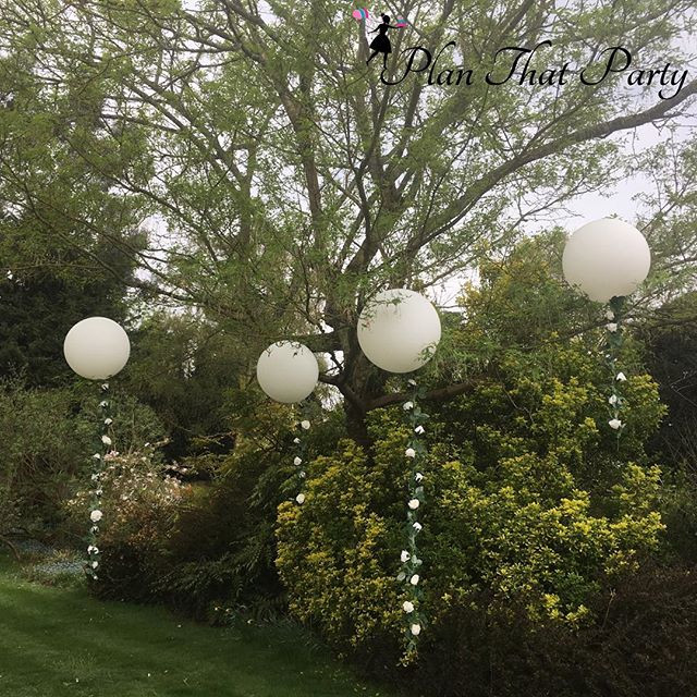 Rose Tail Bubble Balloons