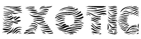 Exotic.Logo.png