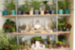 shop-oct-197.jpg