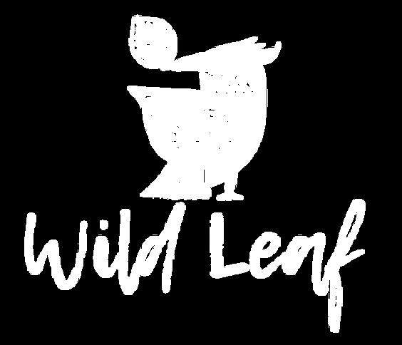 Wild Leaf, Bristol