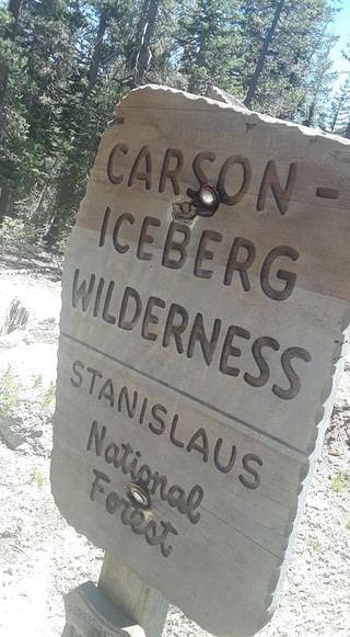 Carson Iceberg Wilderness Sign