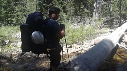 Walking Over a Fallen Tree to Cross a Stream
