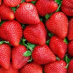 berries2.jpeg