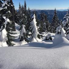 Snow glitter.  Snowshoe hike on Seymour Mountain.