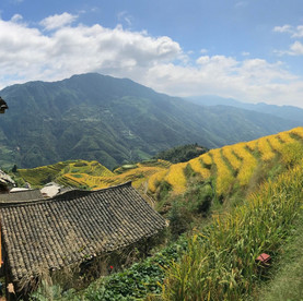 Rice terraces near Guilin, China.