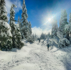 Hollyburn Snow Hike, Sunshine_