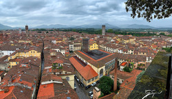 View from one of many towers, Lucca_