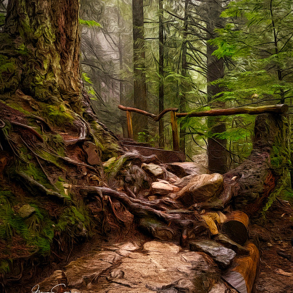 Grouse Grind, Wet & Cold_