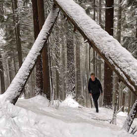 Two fallen trees make a perfect archway. Grouse Mountain.