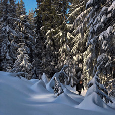 Sunny morning after heavy snow. Grouse Mountain.