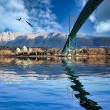View from under Lions Gate Bridge_