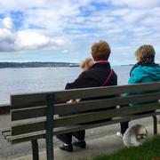 Enjoying the view.  Seawall at English Bay.