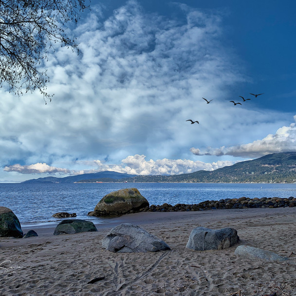 Sunrise Beach, Stanley Park