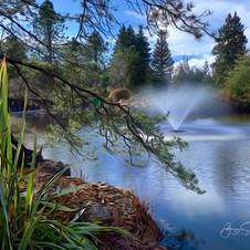 VanDusen Gardens, Vancouver.