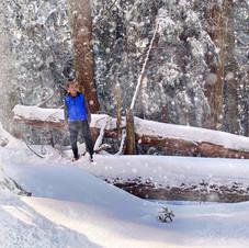 Intrepid hiker, Grouse Mountain.