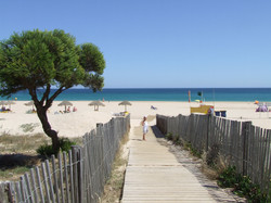 strand omgeving