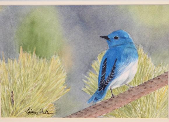 """Bluebird"" watercolor"