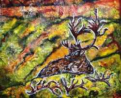 The Woodland Caribou