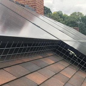 Bird proofing solar panels and cleaning.jpeg