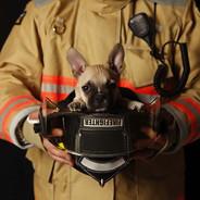 Extintores profesionales
