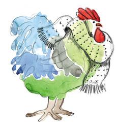 Η Κότα που Έγινε Αβγό / The Chicken that Turned to Egg