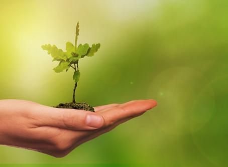 Firmy Firmám: iniciativa HPCG na podporu firem postižených dopady COVID-19