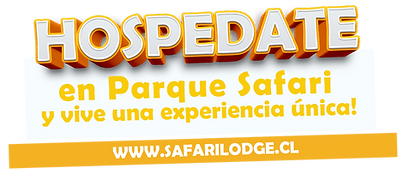 safari lodge una experiencia unica.png