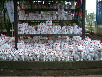 Maneki Neko (招き猫)