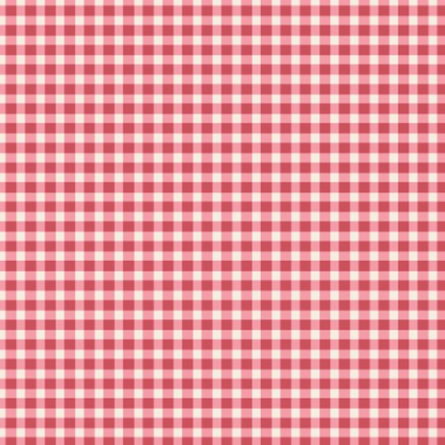 Beautiful Basics - Checks - Red