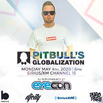 Eyecon Pitbull's Global final.jpg