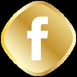 Gol Facebook logo.png