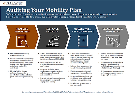 auditing your mobility plan.png