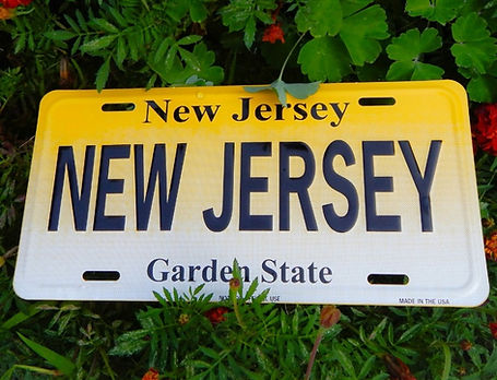 new%2520jersey%2520state%2520license%252