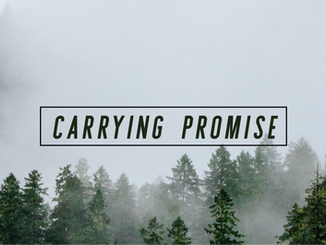 Carrying Promise