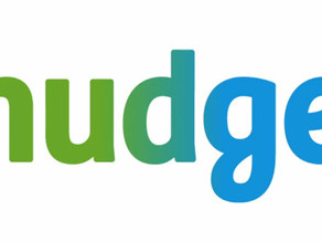 Looking back at the Nudge Global Impact Challenge 2019