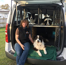 Rachel from Take the Lead with 3 border collies