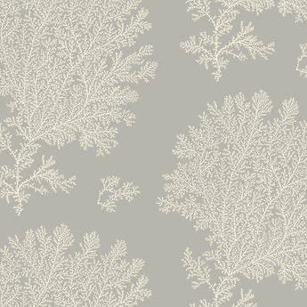 New design of handprinted wallpaper featuring drawings of fossils, printed in cream on a grey background