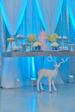 Silver Glitter Top Table & Backdrop