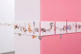 Catalina Schliebener: Growing Sideways exhibition, 2017, HACHE Galeria - Buenos Aires