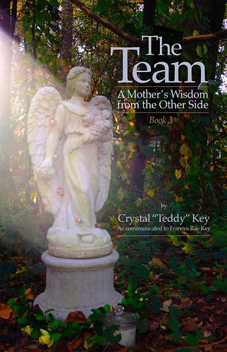 The Team: Book 3