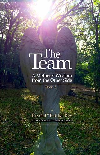 The Team: Book 1