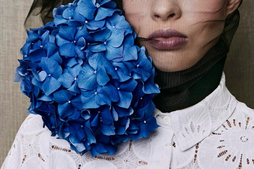 Flower, Beauty, Editorial