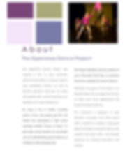 Esperanza Dance Project Student's Curriculum Guide Page 2 - About the Esperanza Dance Project